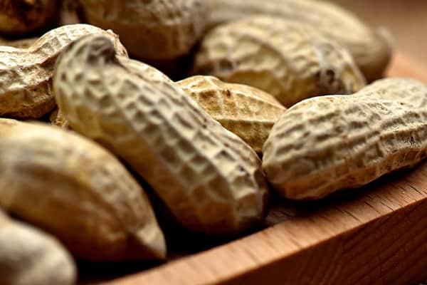 iafns-peanut-protein-small